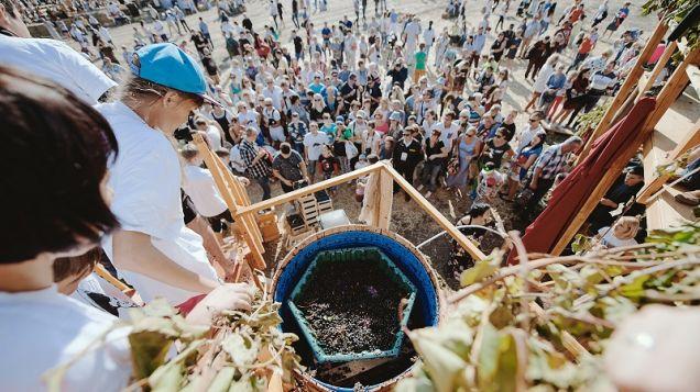 В Крыму прошел Фестиваль молодого вина «Wine Fest» с винной битвой и соревнованиями по давлению винограда ногами