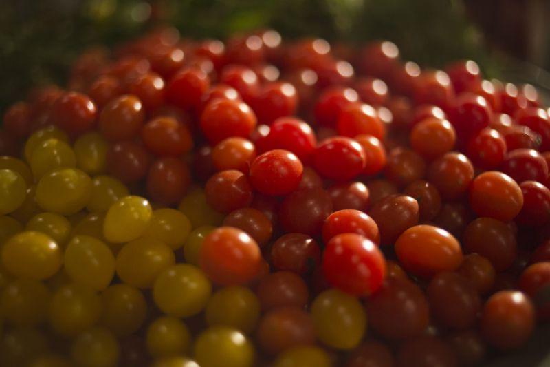 """В Израиле вырастили """"помидоры-капли"""""""