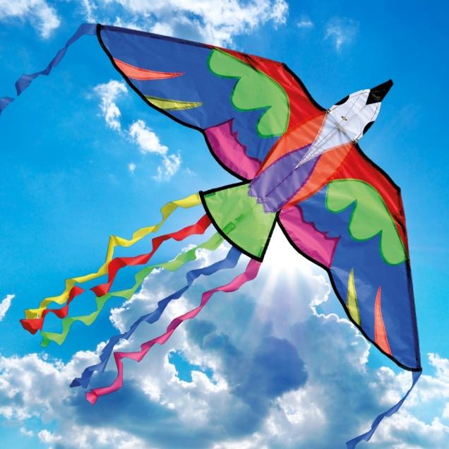Фестиваль воздушных змеев в Black Thai