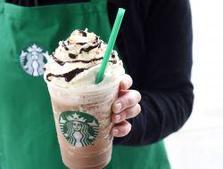 Starbucks организовал бесплатные консультации для иммигрантов
