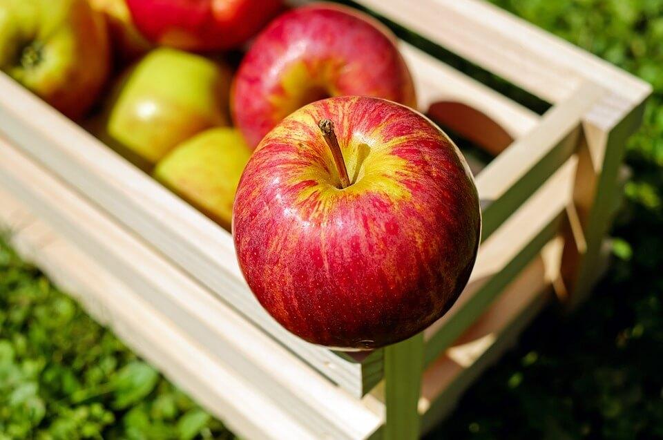 5 фактов о яблоках, которые вас удивят
