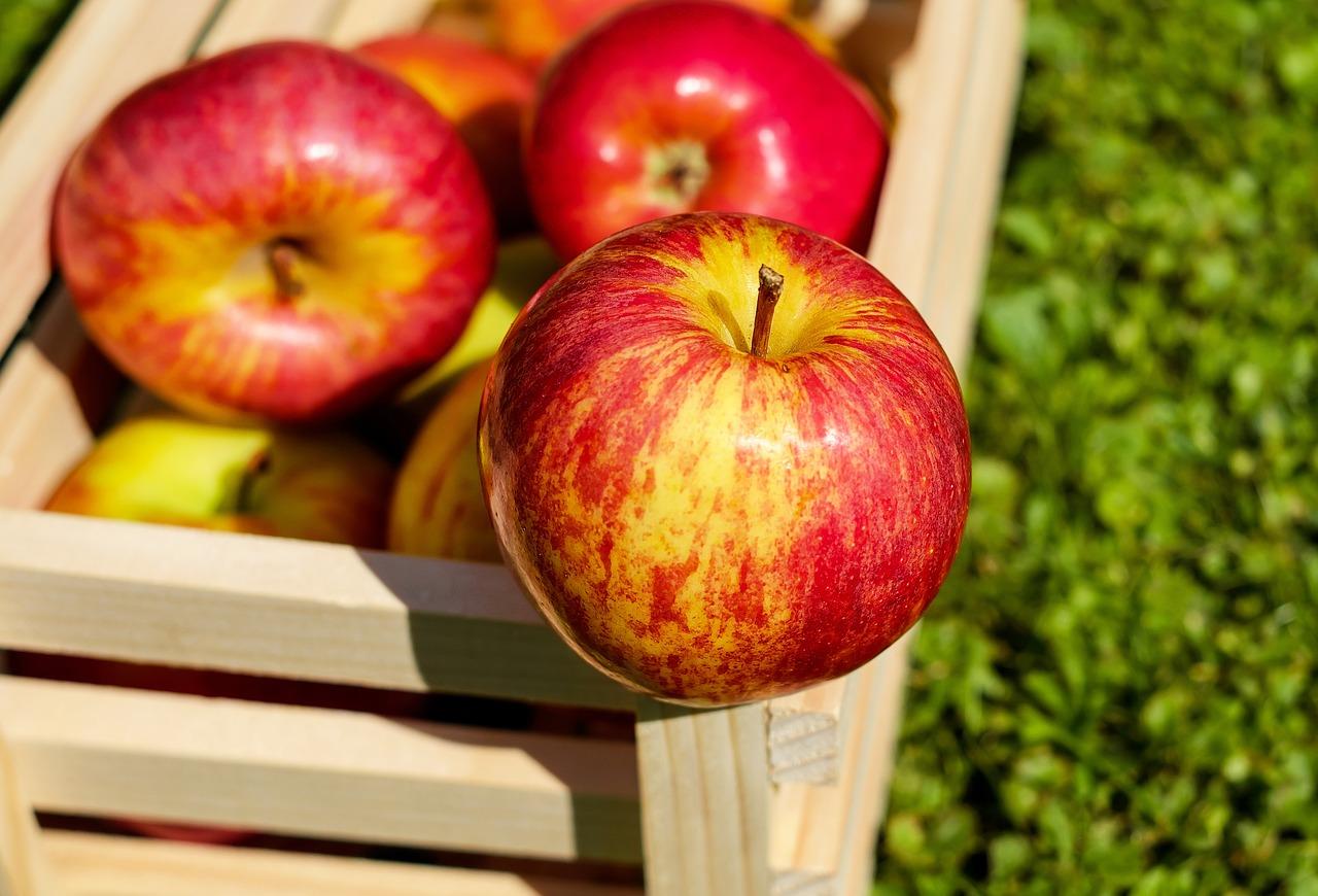 Яблоки признали лучшим средством от рака