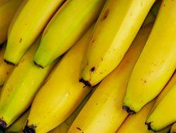 Эксперты назвали самый любимый фрукт россиян