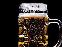 В Сингапуре создали полезное пиво с пробиотиками
