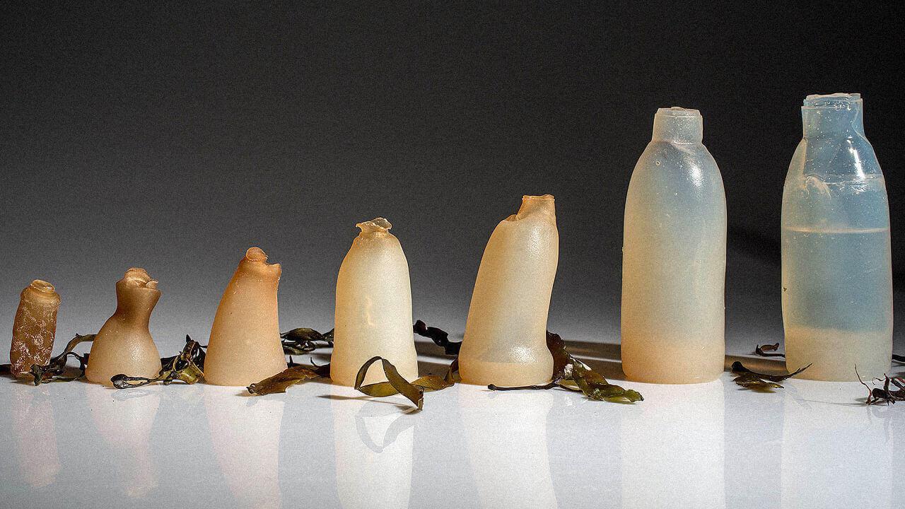 Студент из Исландии изобрел эко-бутылки из водорослей