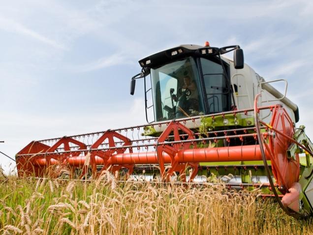 Пошлину на экспорт пшеницы введут с 1 февраля