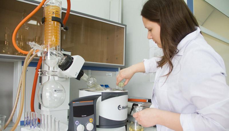 Российские ученые создали полезный кефир из морских ежей