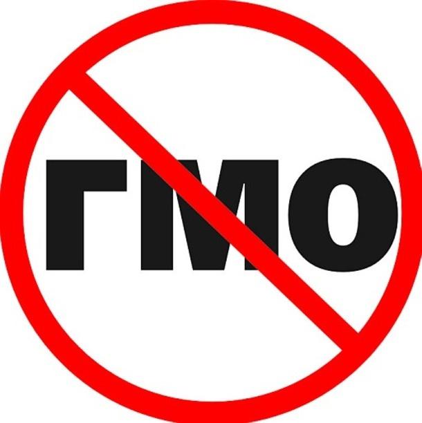 В России могут запретить ГМО