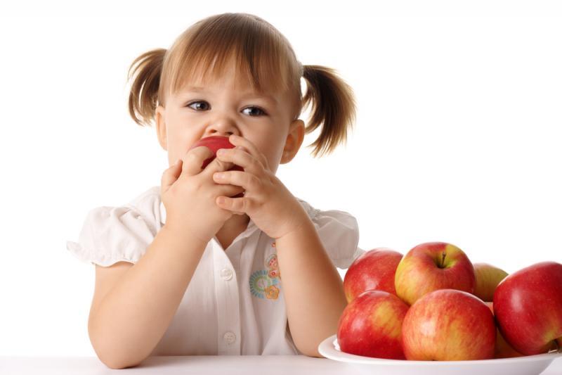 В российских школах будут проводить уроки правильного питания