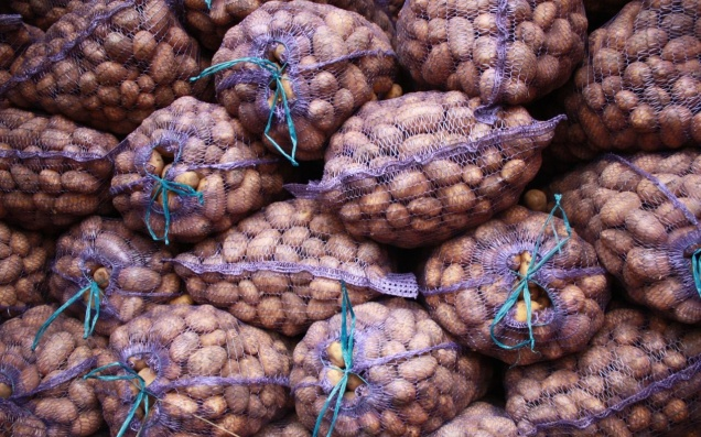Импорт картофеля из ЕС могут запретить