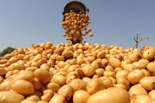 Финляндия надеется на смягчение продовольственного эмбарго РФ