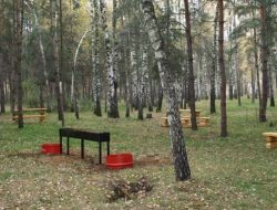 В Москве открыли более 250 зон для пикников