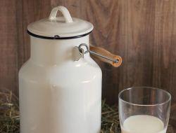 Россия ограничила импорт молочной продукции из Белоруссии