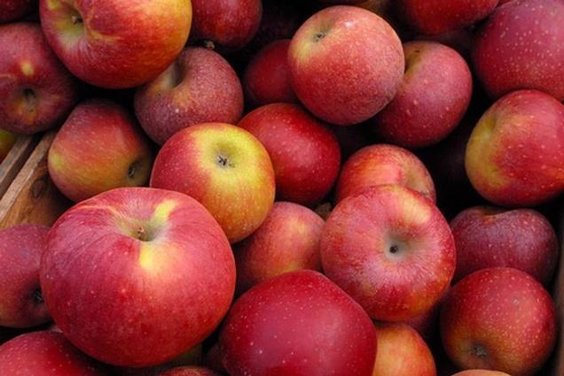 Россельхознадзор разрешил ввоз молдавских яблок