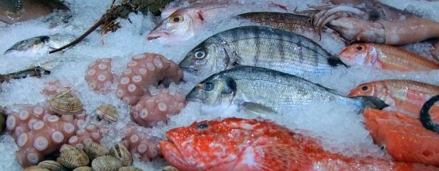 «Рыбная неделя» во второй раз пройдет в Москве