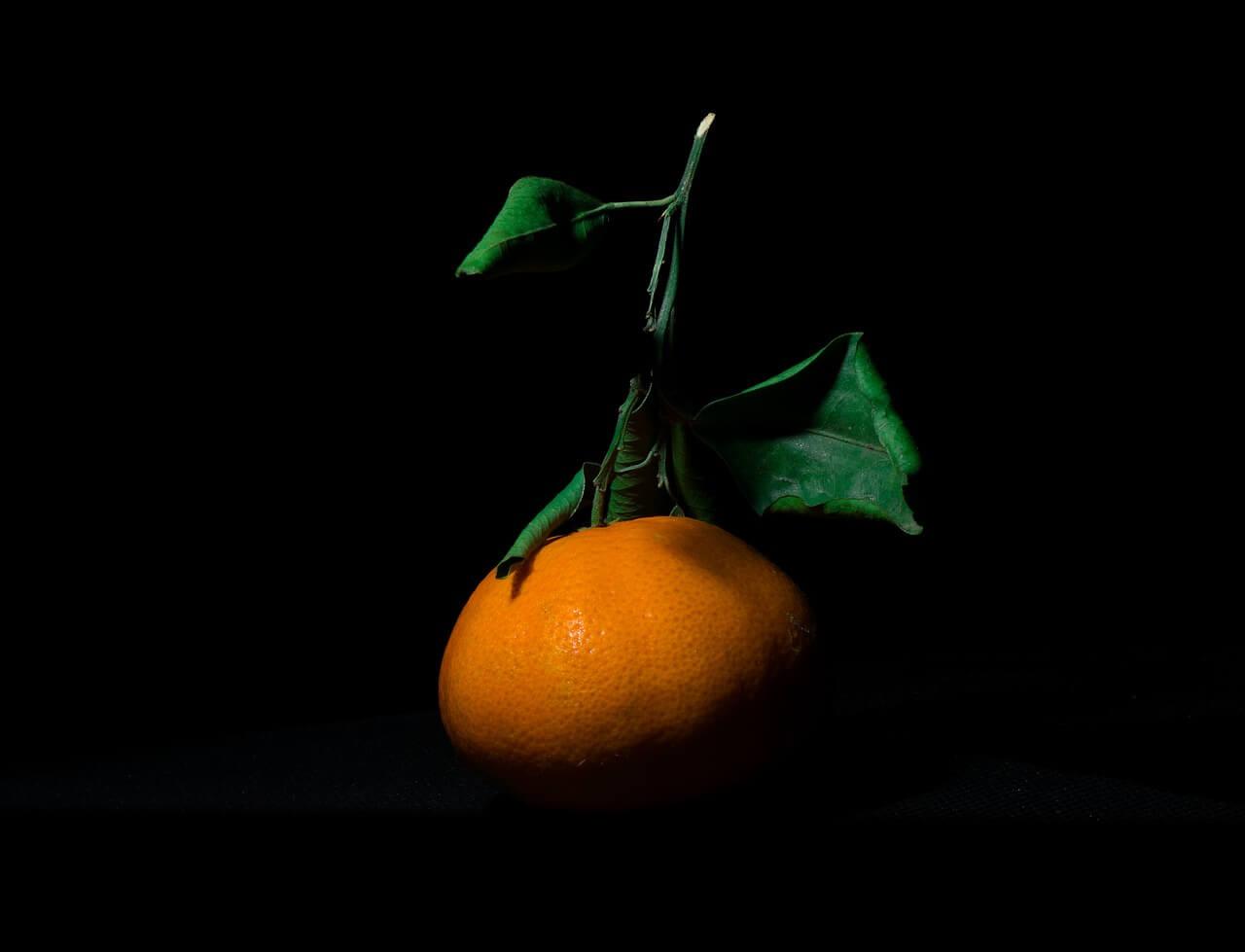 Клопы уничтожили половину урожая абхазских мандаринов