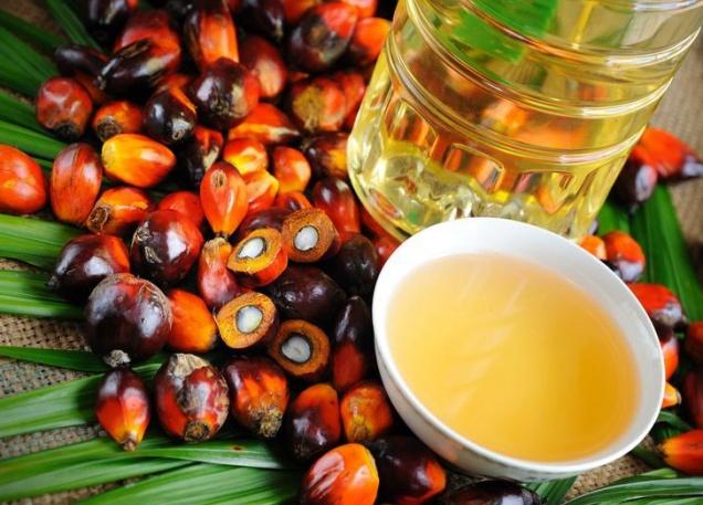 Использование пальмового масла могут ограничить