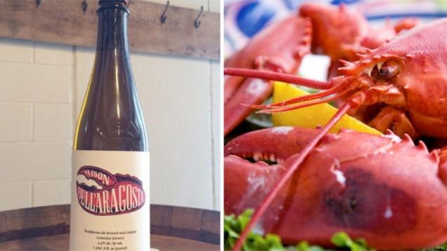 В итальянской пивоварне решили варить пиво из омаров