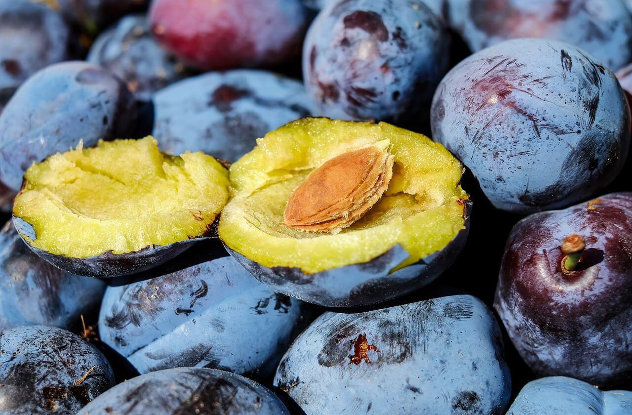Россия разрешила импорт турецких фруктов