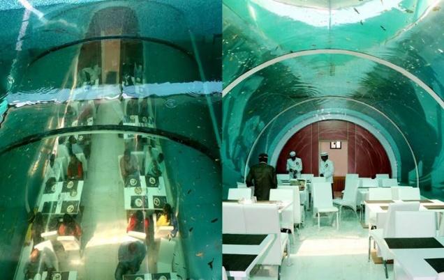 Real Poseydon - первый подводный ресторан Индии
