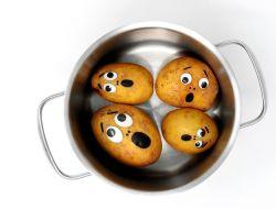 Российский картофель перестал быть свежим