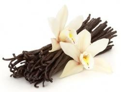 Ученые расшифровали геном ванили