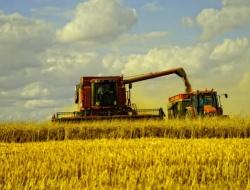 Аграрным компаниям дефолт не угрожает