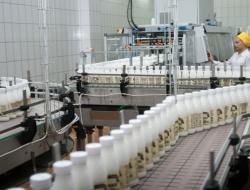 Белоруссия увеличит поставки мяса и молока в Россию