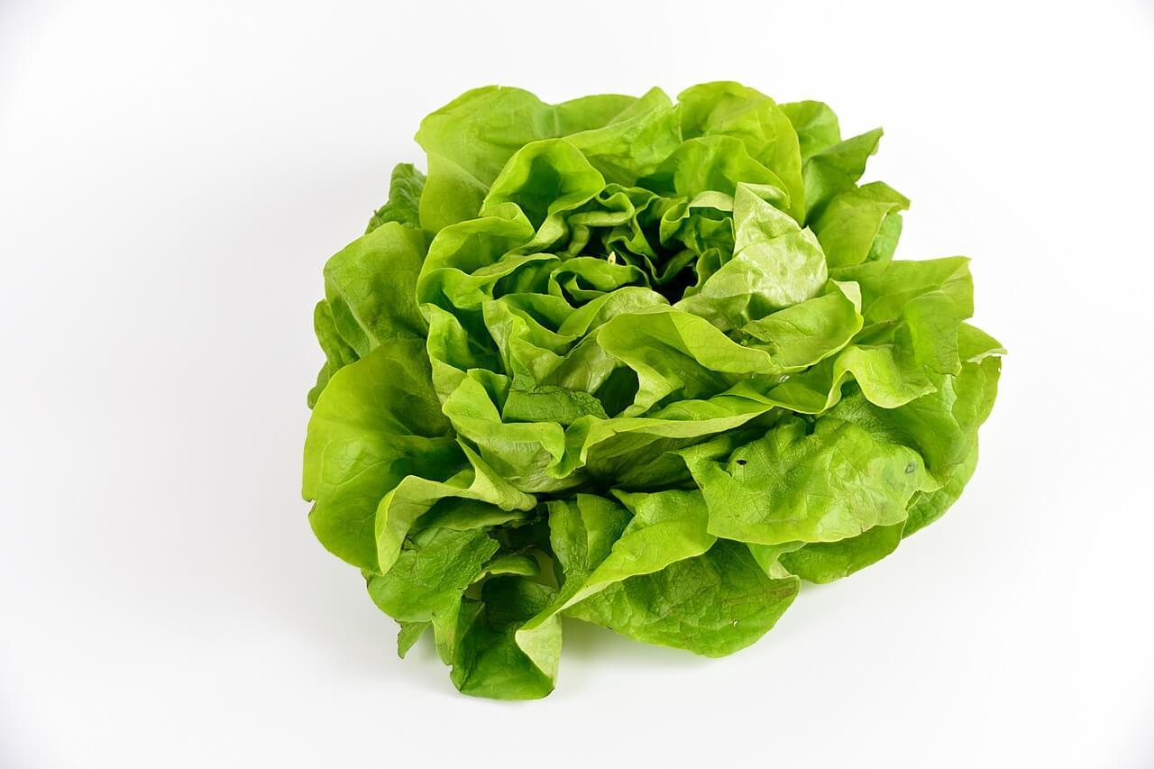 Зеленые овощи омолаживают мозг