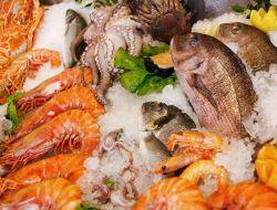 В Москве открылся рыбный кластер