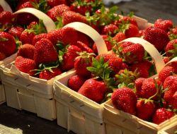 За лето москвичи купили более 1 тыс. тонн клубники