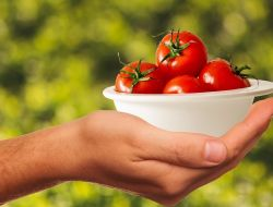 Овощи – лучшее средство от стресса