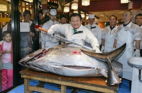 На аукционе в Токио продан голубой тунец за $37,5 тыс