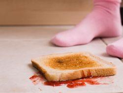 Правило «пяти секунд» для упавшей еды доказали научно