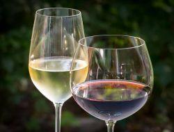 В Молдавии вино причислили к продуктам питания