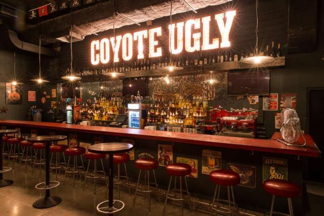 Гадкий койот | Coyote Ugly